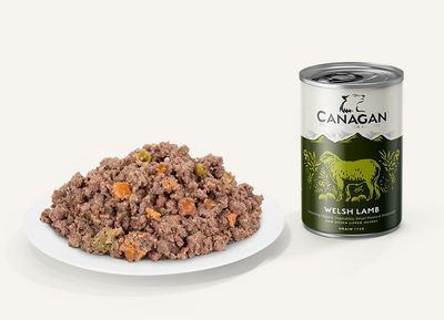 Canagan Welsh Lamb For Dogs 400g