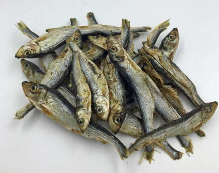 JR pet products Dried Baltic sprats